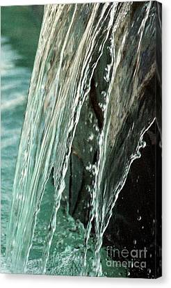 Aqua Opaque Canvas Print by Michael Hoard