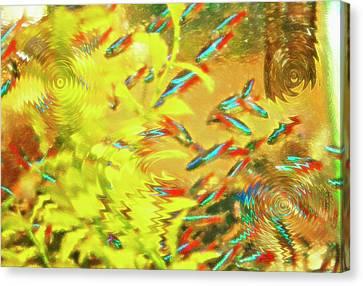 Aquarium Art 7 Canvas Print by Steve Ohlsen