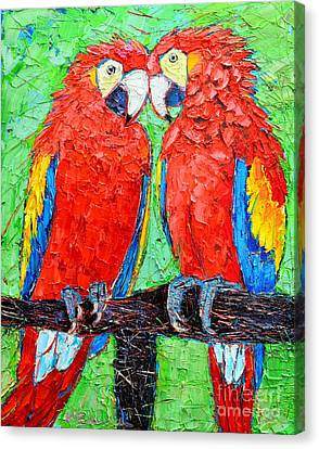Ara Love A Moment Of Tenderness Between Two Scarlet Macaw Parrots Canvas Print by Ana Maria Edulescu
