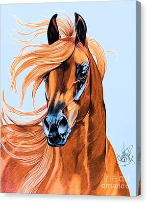 Arabian Portrait In Color Pencil Canvas Print by Cheryl Poland