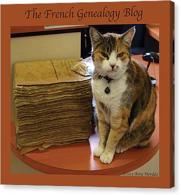 Archives Cat With Fgb Border Canvas Print by A Morddel