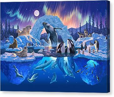 Arctic Harmony Canvas Print by Chris Heitt