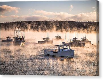 Arctic Sea Smoke Canvas Print by Benjamin Williamson