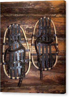 Arctic Snowshoes Canvas Print by Louise Murray