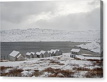 Arctic Winter Canvas Print by Gry Thunes