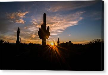 Arizona Desert Sunset Canvas Print by Michael J Bauer