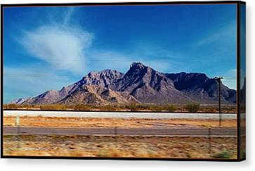 Arizona - On The Fly Canvas Print by Glenn McCarthy Art and Photography