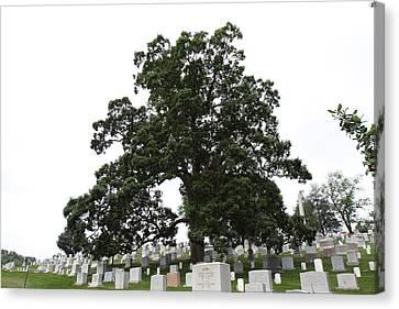 Arlington National Cemetery - 01134 Canvas Print by DC Photographer