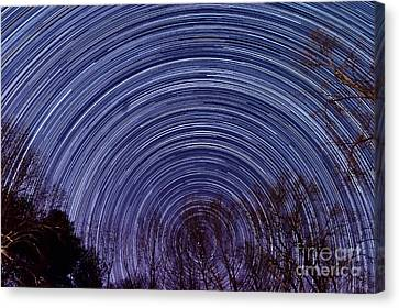 Arnold Startrails Canvas Print by Benjamin Reed