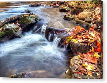 Art For Crohn's Hdr Fall Creek Canvas Print by Tim Buisman
