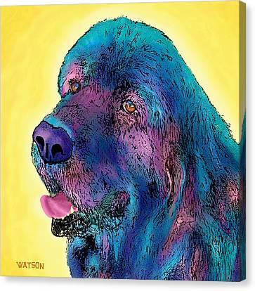 Arthur  Canvas Print by Marlene Watson