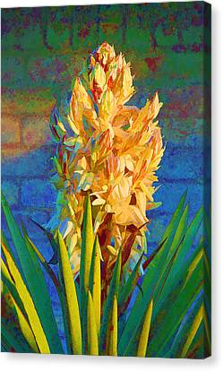 Artistic Yellow Yucca Canvas Print by Linda Phelps