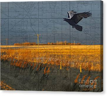 As The Crow Flies-fall Fields Canvas Print by Judy Wood
