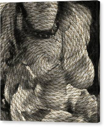 Ascendancy With Ms Roper Textured Canvas Print by Thomas Woolworth