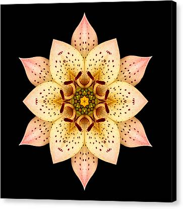 Asiatic Lily Flower Mandala Canvas Print by David J Bookbinder