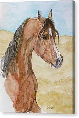 Asileh Canvas Print by Janina  Suuronen