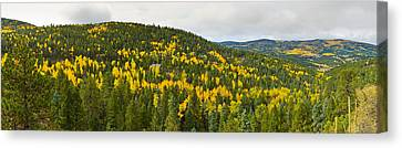 Aspen Hillside In Autumn, Sangre De Canvas Print by Panoramic Images