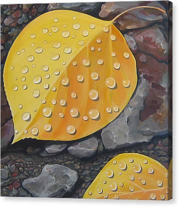 Aspen Rain Canvas Print by Hunter Jay