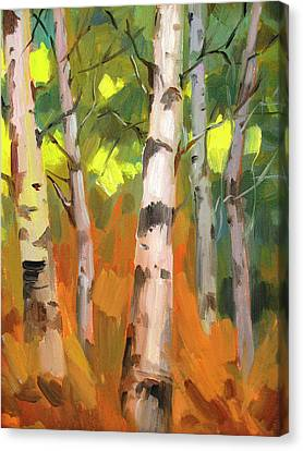 Aspen Trees Canvas Print by Diane McClary