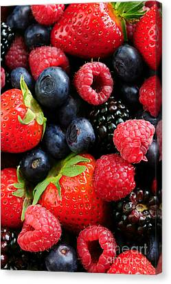 Assorted Fresh Berries Canvas Print by Elena Elisseeva