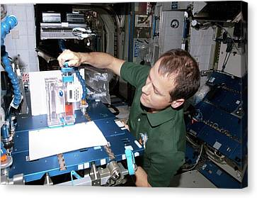 Astronaut Conducting Experiment On Iss Canvas Print by Nasa