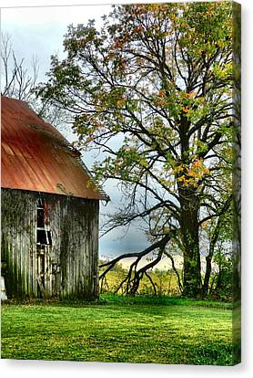 At The Barn Canvas Print by Julie Dant