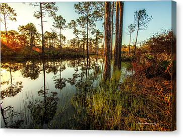 At The Sunrise Canvas Print by Volker blu Firnkes