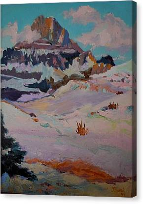 At The Top - Glacier National Park Canvas Print by Francine Frank