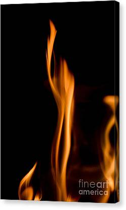 At845903 Fire Statue Canvas Print by Karl Thomas