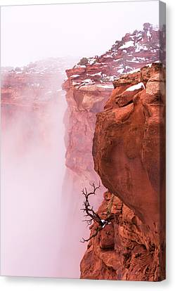 Atop Canyonlands Canvas Print by Chad Dutson