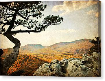 Atop The Rock Canvas Print by Kelly Nowak