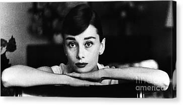 Audrey Hepburn Canvas Print by George Daniell