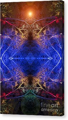 Aurora Canvas Print by Tim Gainey