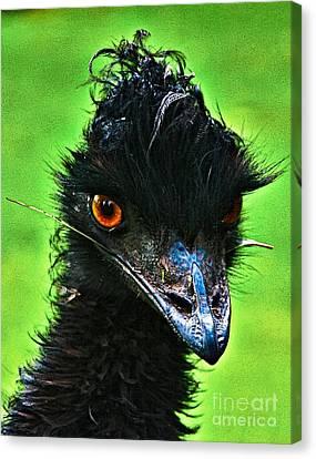 Australian Emu Canvas Print by Blair Stuart