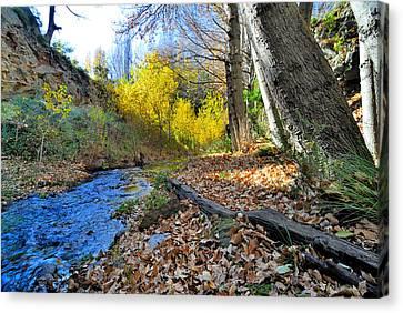 Autumn River Canvas Print by Guido Montanes Castillo