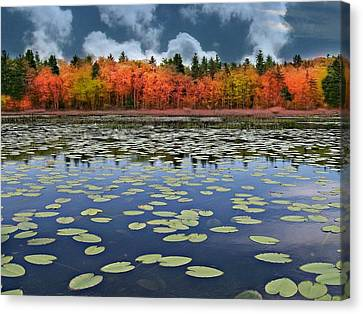 Autumn Across The Pond Canvas Print by Barbara S Nickerson