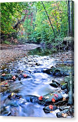 Autumn Arrives Canvas Print by Frozen in Time Fine Art Photography