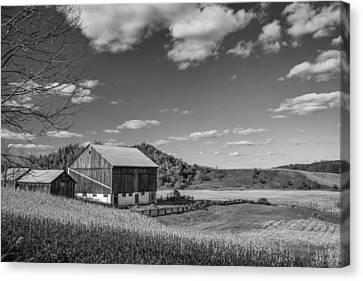 Autumn Barn Monochrome Canvas Print by Steve Harrington
