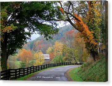 Autumn Beauty Around The Bend Canvas Print by Carolyn Postelwait