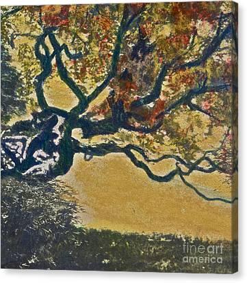 Autumn Bonsai Tree - Lithograph Canvas Print by Deborah Talbot - Kostisin