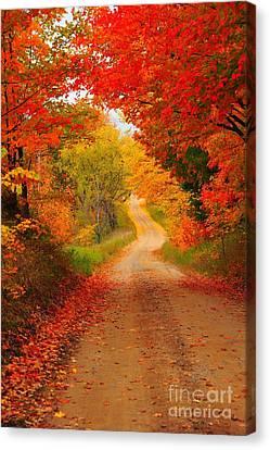 Autumn Cameo Canvas Print by Terri Gostola