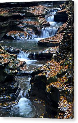 Autumn Cascade Canvas Print by Frozen in Time Fine Art Photography
