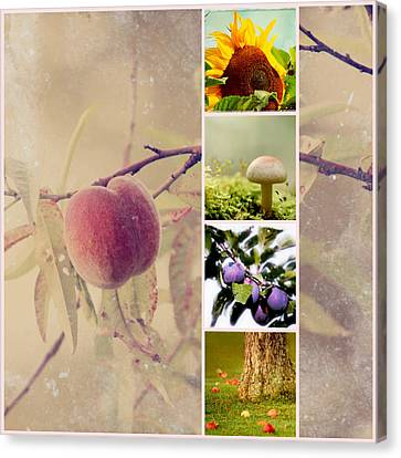 Autumn Collage Canvas Print by Heike Hultsch