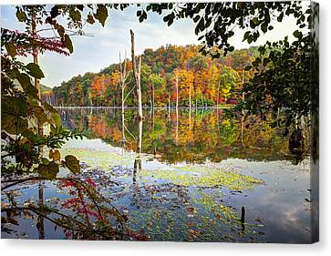 Autumn Colors Through The Trees On Monksville Reservoir - Long Pond Ironworks State Park Canvas Print by Gary Heller