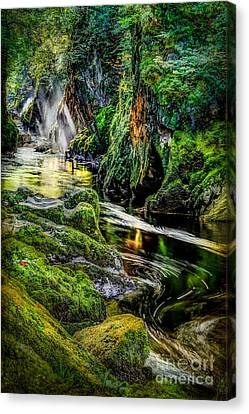 Autumn Creek Canvas Print by Adrian Evans
