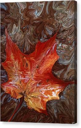 Autumn Canvas Print by Cyril Furlan