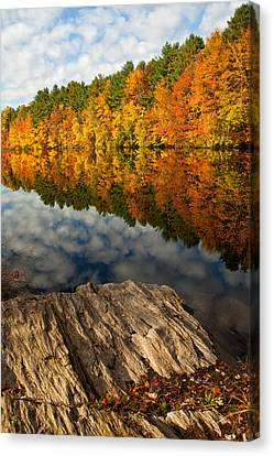 Autumn Day Canvas Print by Karol Livote