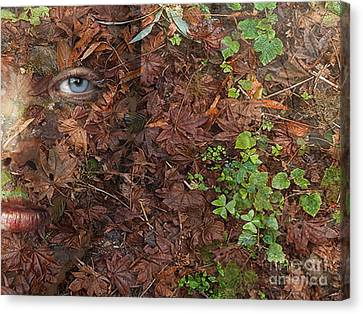 Autumn Dryad Forest Floor Canvas Print by Maureen Tillman