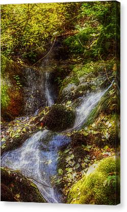 Autumn Falls Canvas Print by Melanie Lankford Photography
