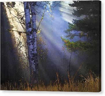 Autumn Fog With Sun Rays Canvas Print by Theresa Tahara